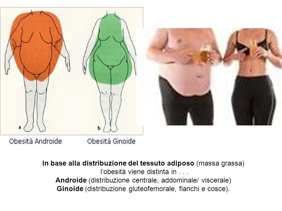 In base alla distribuzione del tessuto adiposo (massa grassa) l'obesità viene distinta in... Androide (distribuzione centrale, addominale/ viscerale)
