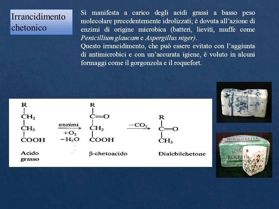 Si manifesta a carico degli acidi grassi a basso peso molecolare precedentemente idrolizzati; è dovuta all'azione di enzimi di origine microbica (batt