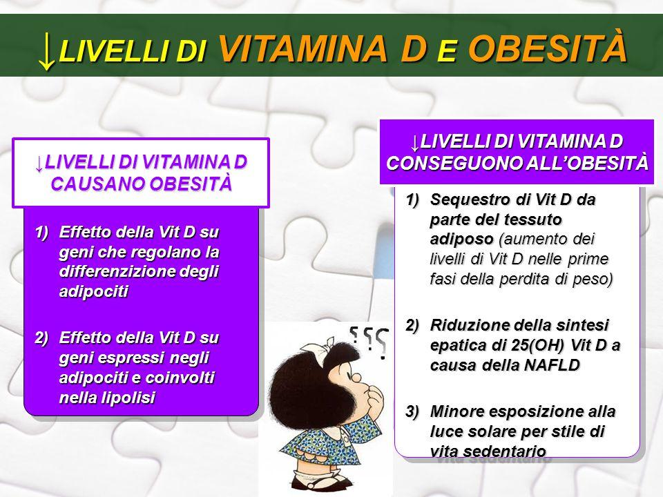 ↓ LIVELLI DI VITAMINA D E OBESITÀ 1)Sequestro di Vit D da parte del tessuto adiposo (aumento dei livelli di Vit D nelle prime fasi della perdita di pe