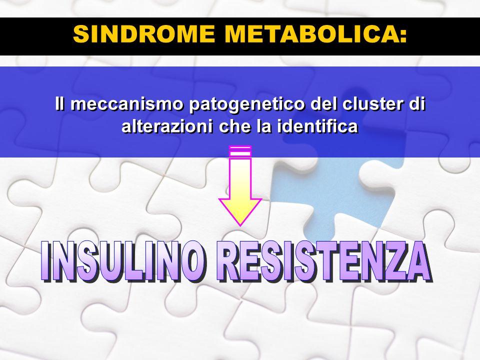 SINDROME METABOLICA: Il meccanismo patogenetico del cluster di alterazioni che la identifica