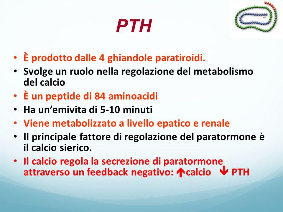 Azioni del PTH RENEInibisce il riassorbimento di fosfati e bicarbonati Stimola il riassorbimento di Ca e Mg Stimola l'attività 1-α-idrossilasi OSSOStimola il riassorbimento di Ca e P INTESTINOEffetti indiretti per la sintesi dell'1,25 (OH)2 D