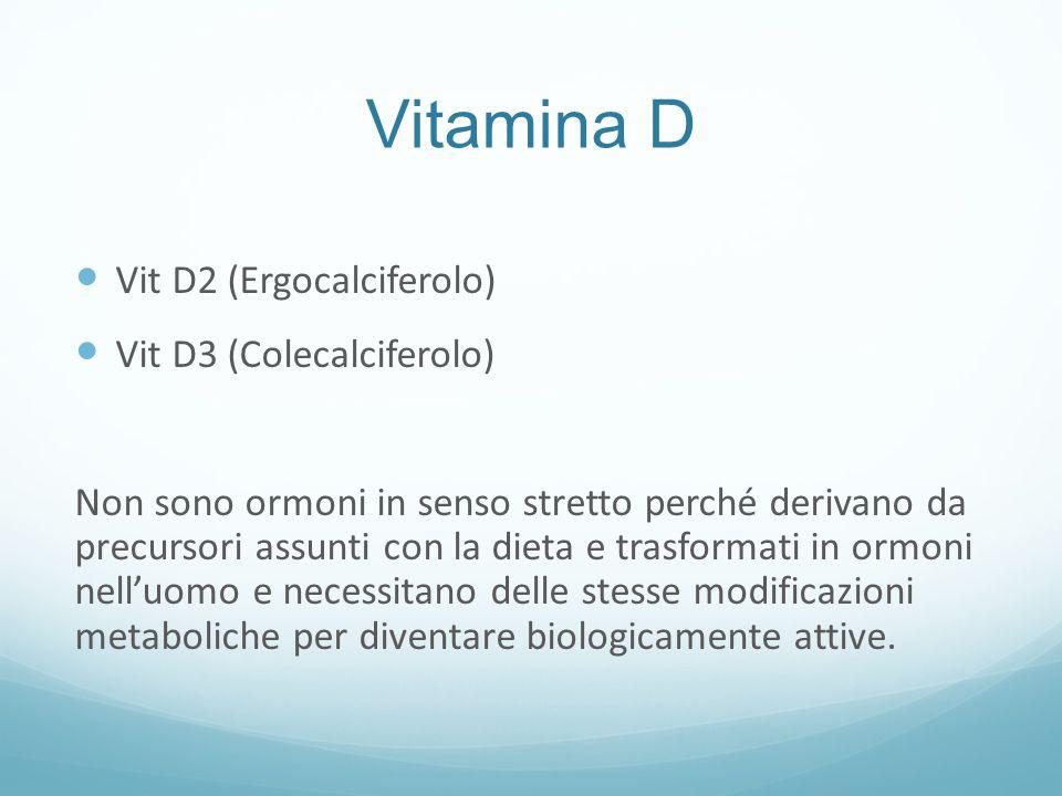 Assorbimento della Vit.D La Vit D esogena è assorbita nel digiuno in presenza di sali biliari.