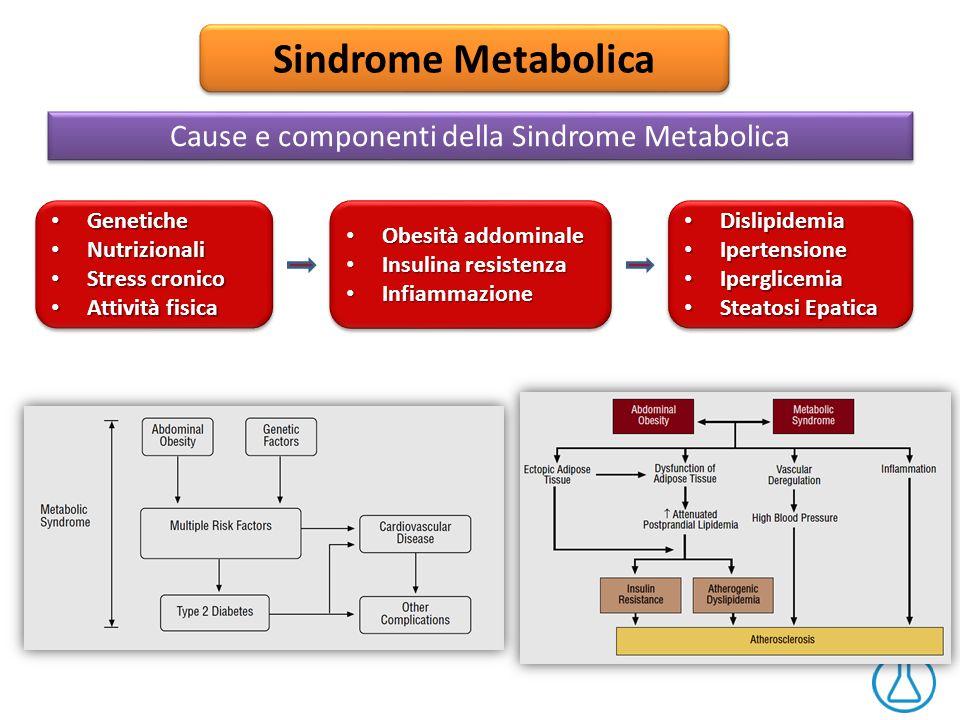 Sindrome Metabolica Cause e componenti della Sindrome Metabolica Dislipidemia Dislipidemia Ipertensione Ipertensione Iperglicemia Iperglicemia Steatos