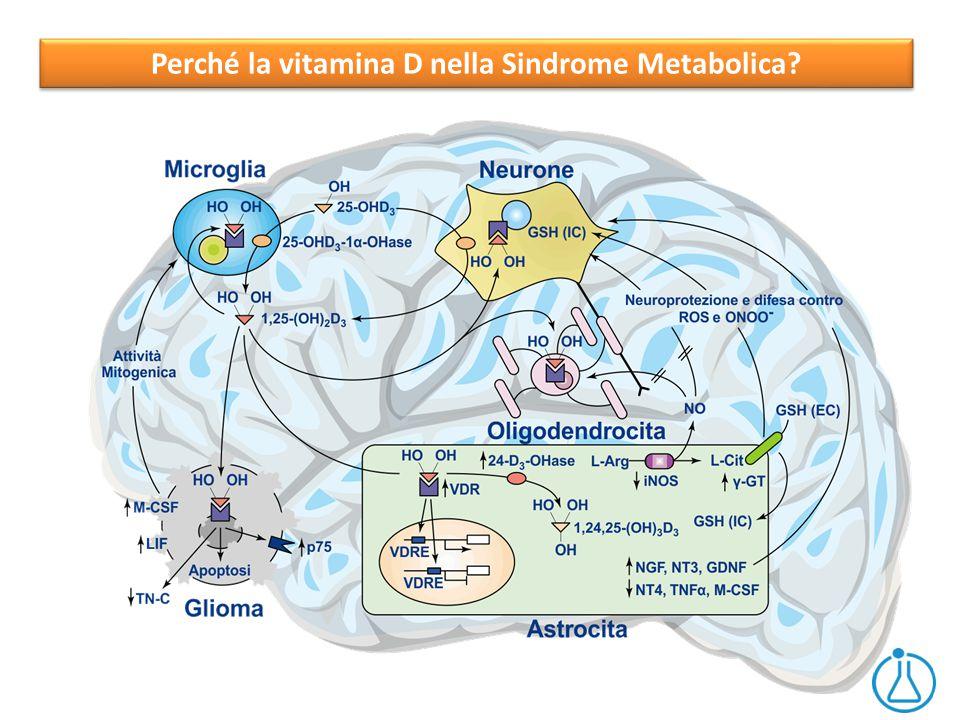 Perché la vitamina D nella Sindrome Metabolica?