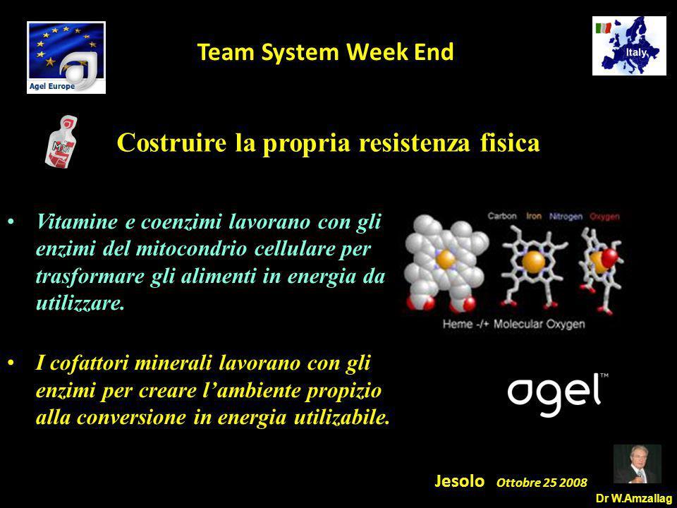 Dr W.Amzallag Jesolo Ottobre 25 2008 5 Team System Week End Costruire la propria resistenza fisica Vitamine e coenzimi lavorano con gli enzimi del mitocondrio cellulare per trasformare gli alimenti in energia da utilizzare.