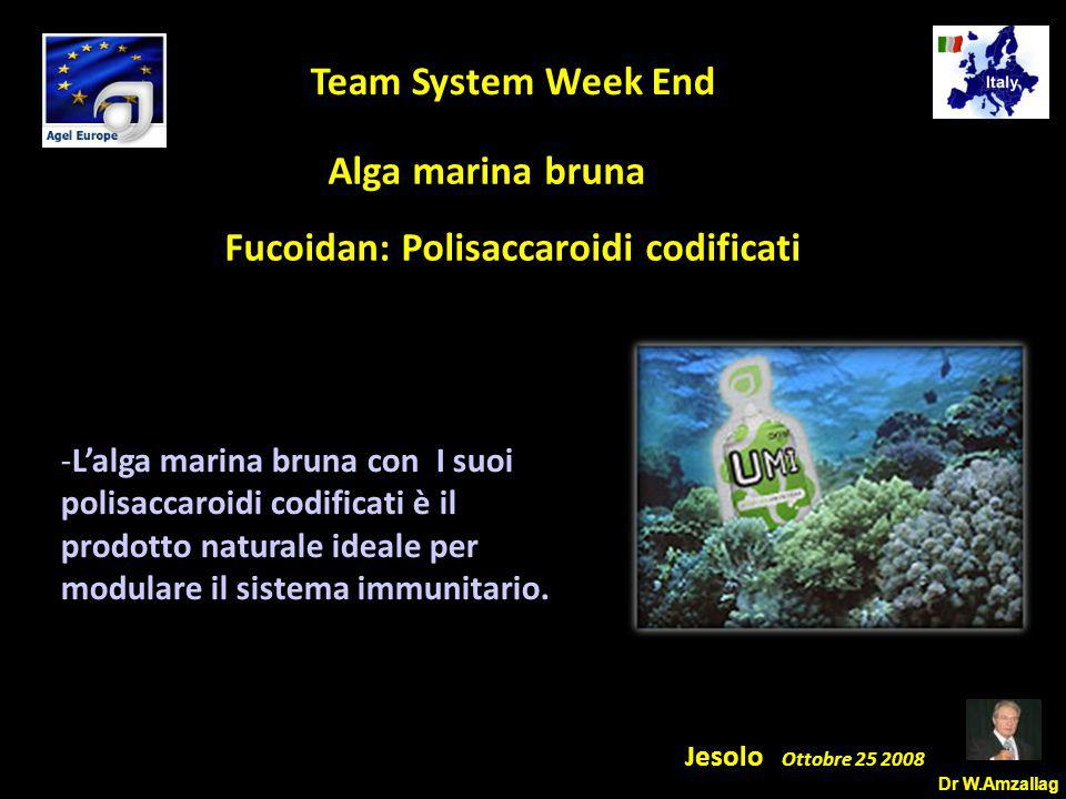 Dr W.Amzallag Jesolo Ottobre 25 2008 5 Team System Week End Alga marina bruna Fucoidan: Polisaccaroidi codificati -L'alga marina bruna con I suoi polisaccaroidi codificati è il prodotto naturale ideale per modulare il sistema immunitario.