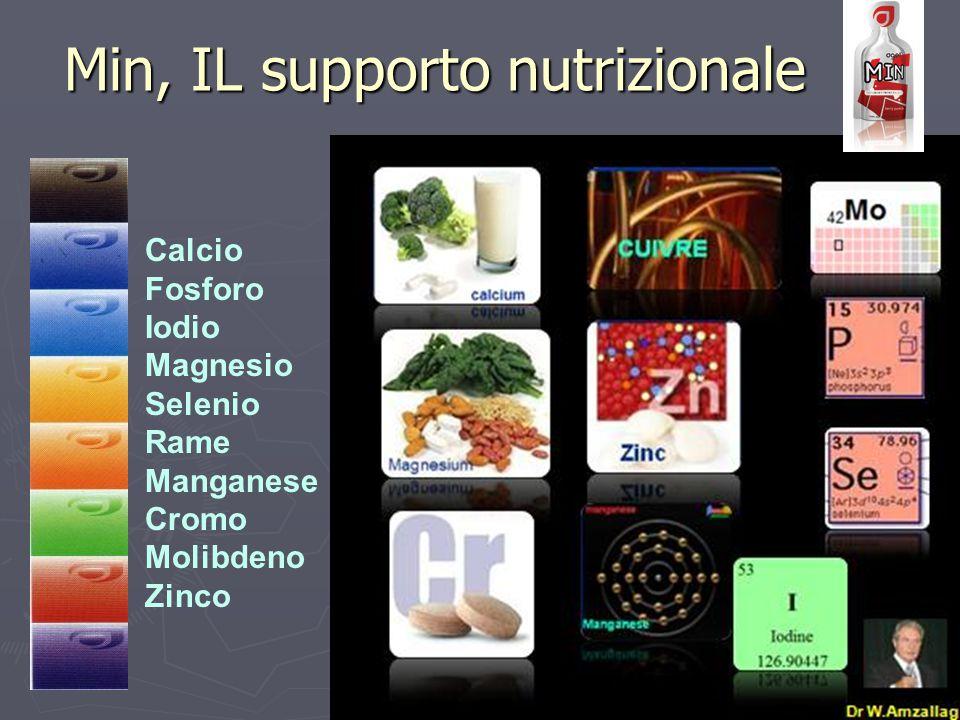 Calcio Fosforo Iodio Magnesio Selenio Rame Manganese Cromo Molibdeno Zinco Min, IL supporto nutrizionale