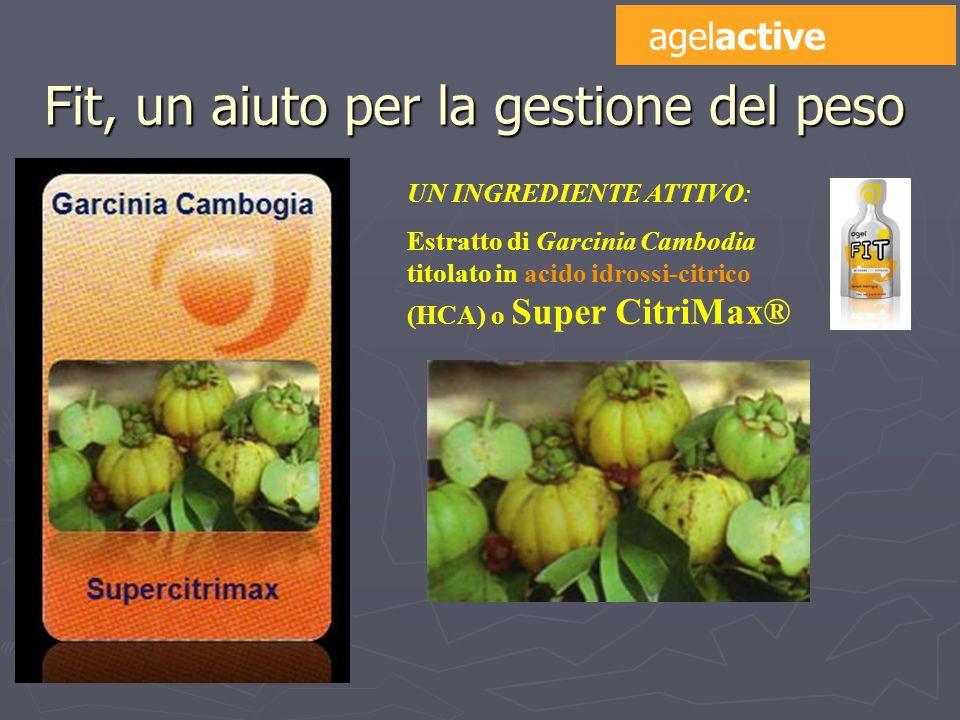 UN INGREDIENTE ATTIVO: Estratto di Garcinia Cambodia titolato in acido idrossi-citrico (HCA) o Super CitriMax® Fit, un aiuto per la gestione del peso agelactive