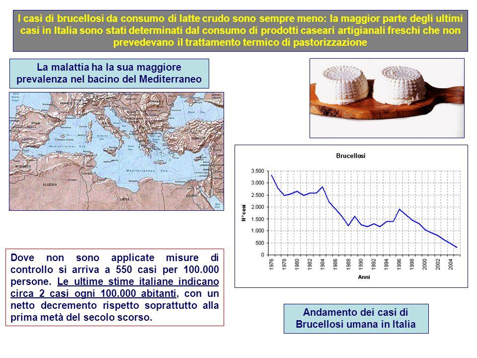 I casi di brucellosi da consumo di latte crudo sono sempre meno: la maggior parte degli ultimi casi in Italia sono stati determinati dal consumo di pr