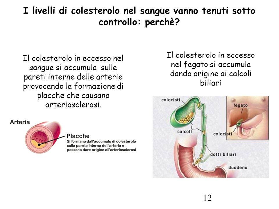 12 Il colesterolo in eccesso nel sangue si accumula sulle pareti interne delle arterie provocando la formazione di placche che causano arteriosclerosi.