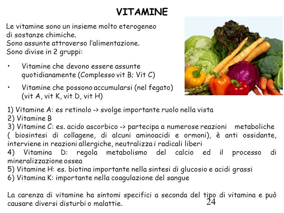24 VITAMINE 1) Vitamine A: es retinolo -> svolge importante ruolo nella vista 2) Vitamine B 3) Vitamine C: es.