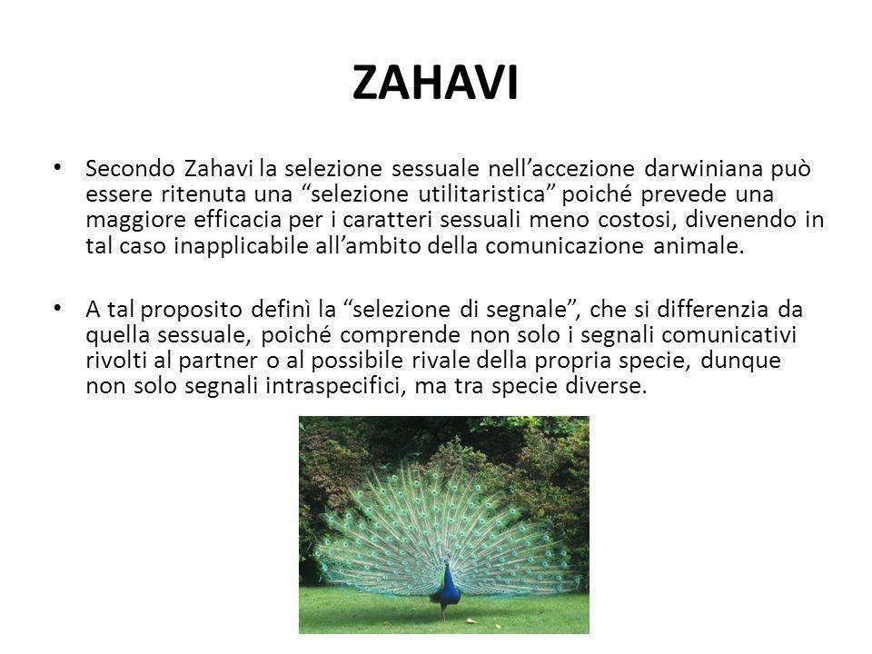 """ZAHAVI Secondo Zahavi la selezione sessuale nell'accezione darwiniana può essere ritenuta una """"selezione utilitaristica"""" poiché prevede una maggiore e"""