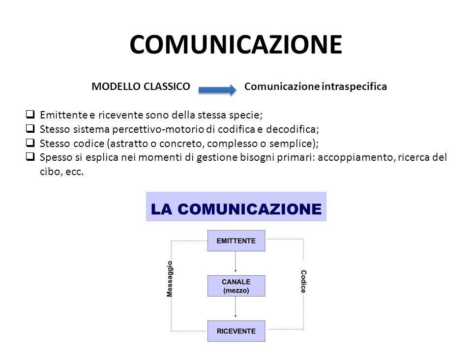 COMUNICAZIONE MODELLO CLASSICO Comunicazione intraspecifica  Emittente e ricevente sono della stessa specie;  Stesso sistema percettivo-motorio di c