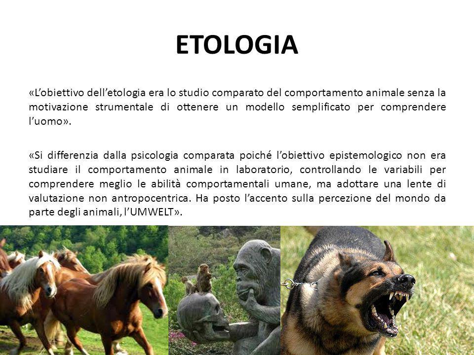 ETOLOGIA «L'obiettivo dell'etologia era lo studio comparato del comportamento animale senza la motivazione strumentale di ottenere un modello semplifi