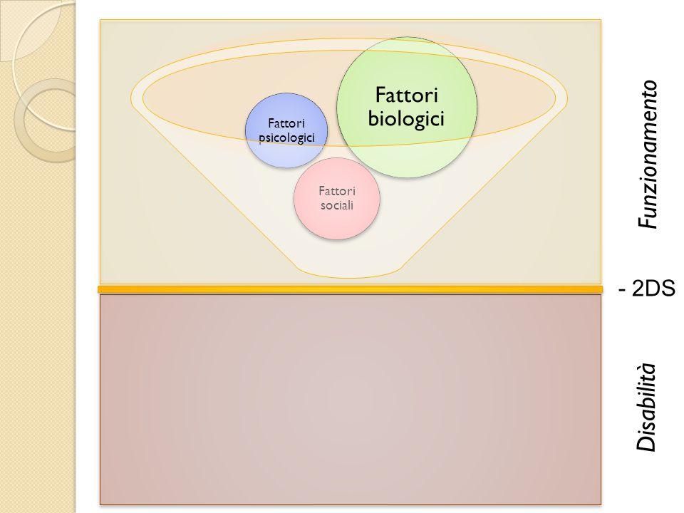 - 2DS Fattori sociali Fattori psicologici Fattori biologici Funzionamento Disabilità