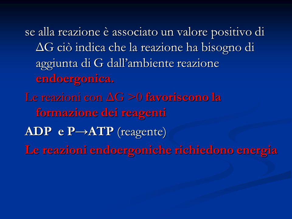 se alla reazione è associato un valore positivo di ΔG ciò indica che la reazione ha bisogno di aggiunta di G dall'ambiente reazione endoergonica. Le r
