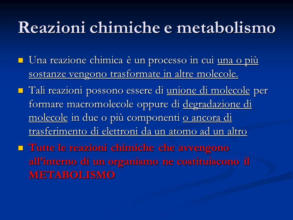 Reazioni chimiche e metabolismo Una reazione chimica è un processo in cui una o più sostanze vengono trasformate in altre molecole. Una reazione chimi