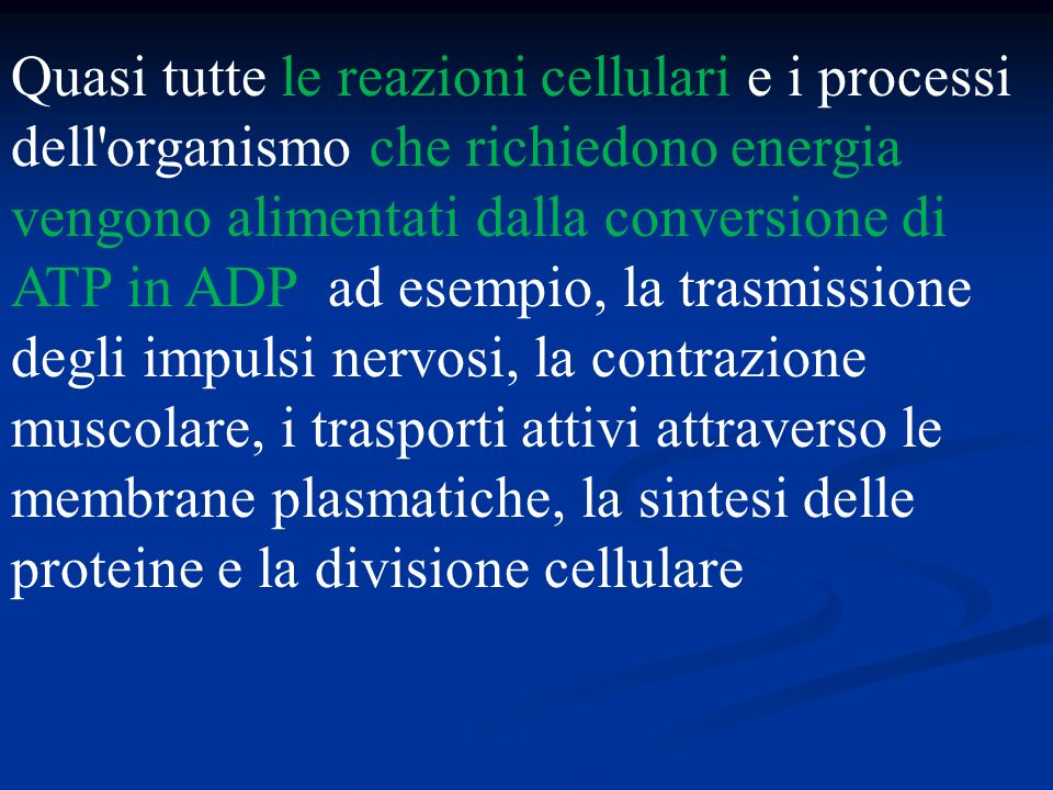Quasi tutte le reazioni cellulari e i processi dell'organismo che richiedono energia vengono alimentati dalla conversione di ATP in ADP ad esempio, la
