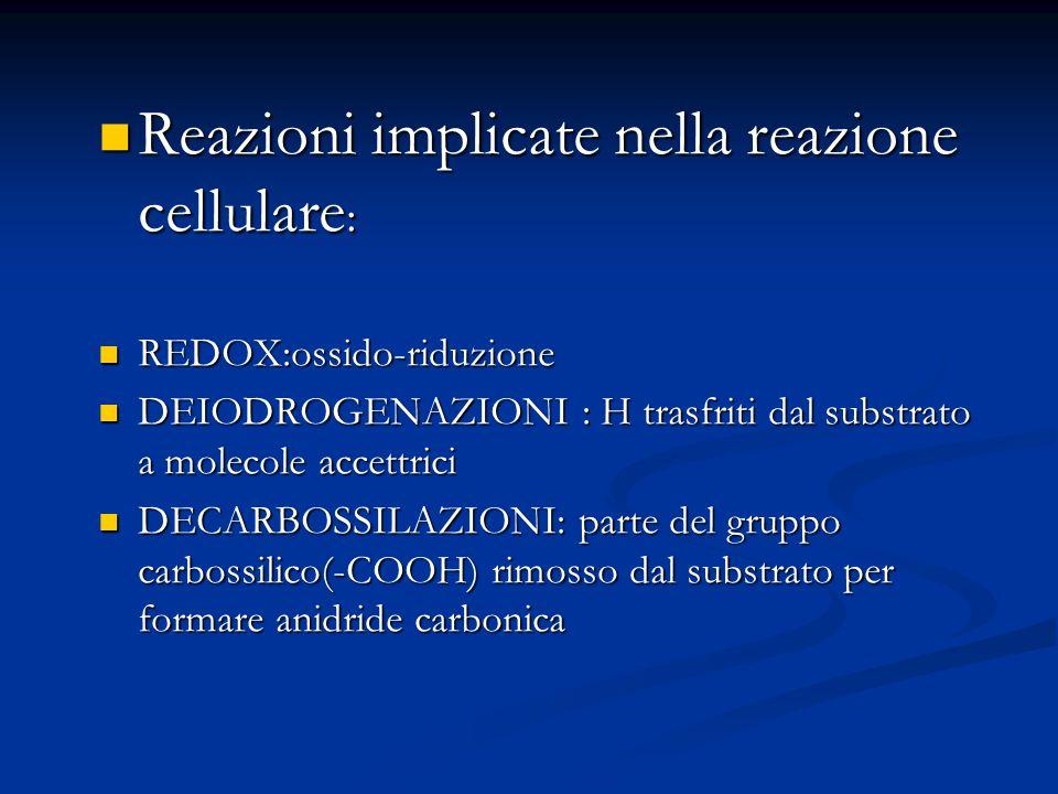 Reazioni implicate nella reazione cellulare : Reazioni implicate nella reazione cellulare : REDOX:ossido-riduzione REDOX:ossido-riduzione DEIODROGENAZ