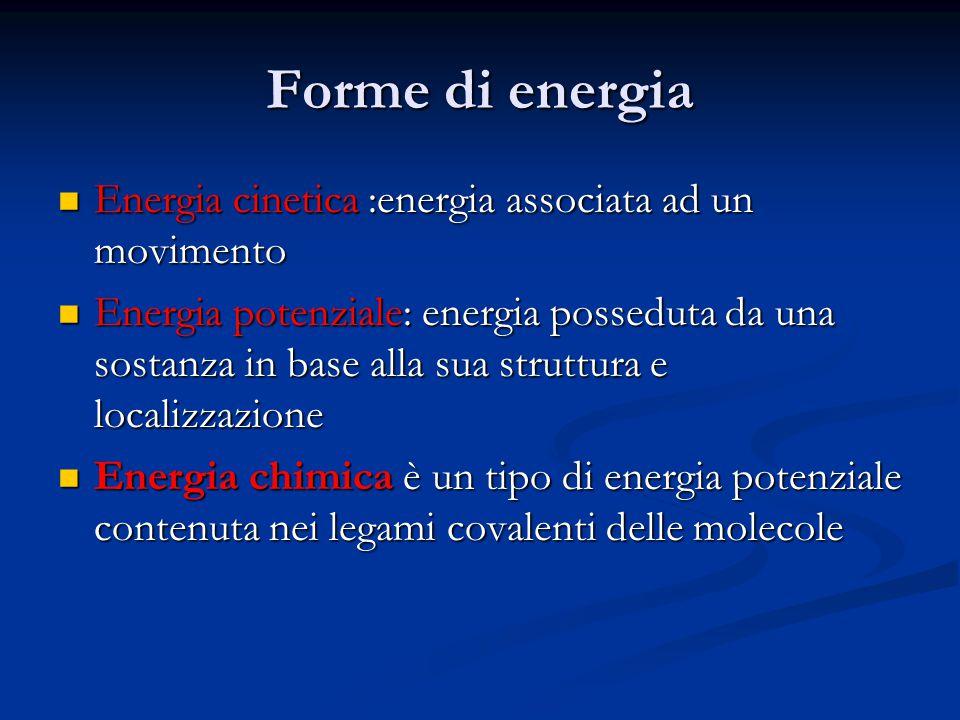 Capacità dell'energia di essere convertita da una forma all'altra Leggi della termodinamica Leggi della termodinamica 1°.l'energia non può essere creata o distrutta 2°.il trasferimento o la trasformazione dell'energia determina l'aumento dell'entropia o grado di disordine del sistema L'incremento dell'entropia fa sì che una parte dell'energia diventi inutilizzabile da parte degli organismi viventi L'incremento dell'entropia fa sì che una parte dell'energia diventi inutilizzabile da parte degli organismi viventi ossia l'entropia è una misura del disordine che non può essere messa a frutto per compiere un lavoro