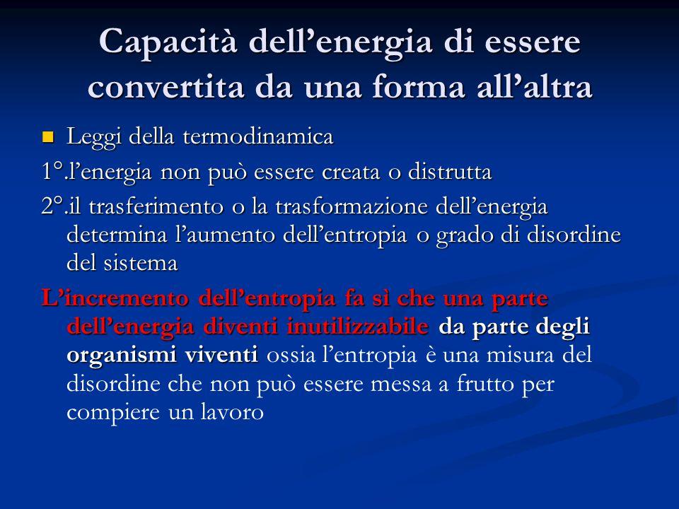Capacità dell'energia di essere convertita da una forma all'altra Leggi della termodinamica Leggi della termodinamica 1°.l'energia non può essere crea