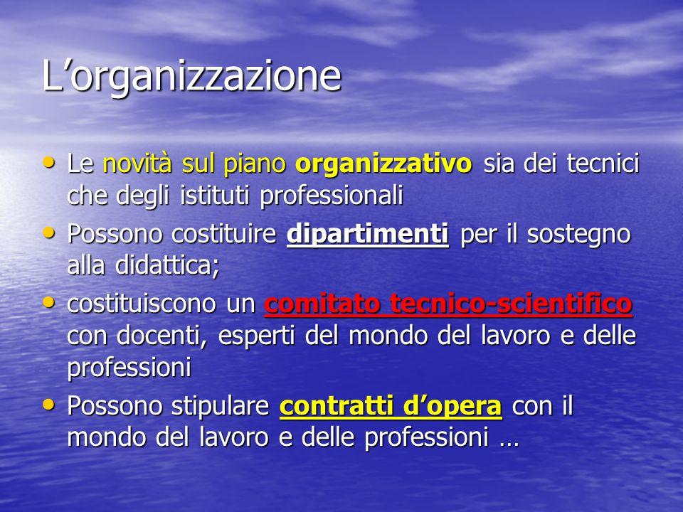 L'organizzazione Le novità sul piano organizzativo sia dei tecnici che degli istituti professionali Le novità sul piano organizzativo sia dei tecnici