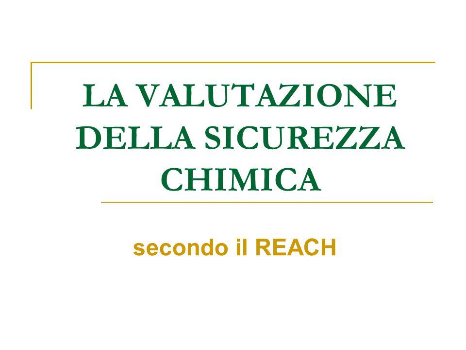 LA VALUTAZIONE DELLA SICUREZZA CHIMICA secondo il REACH