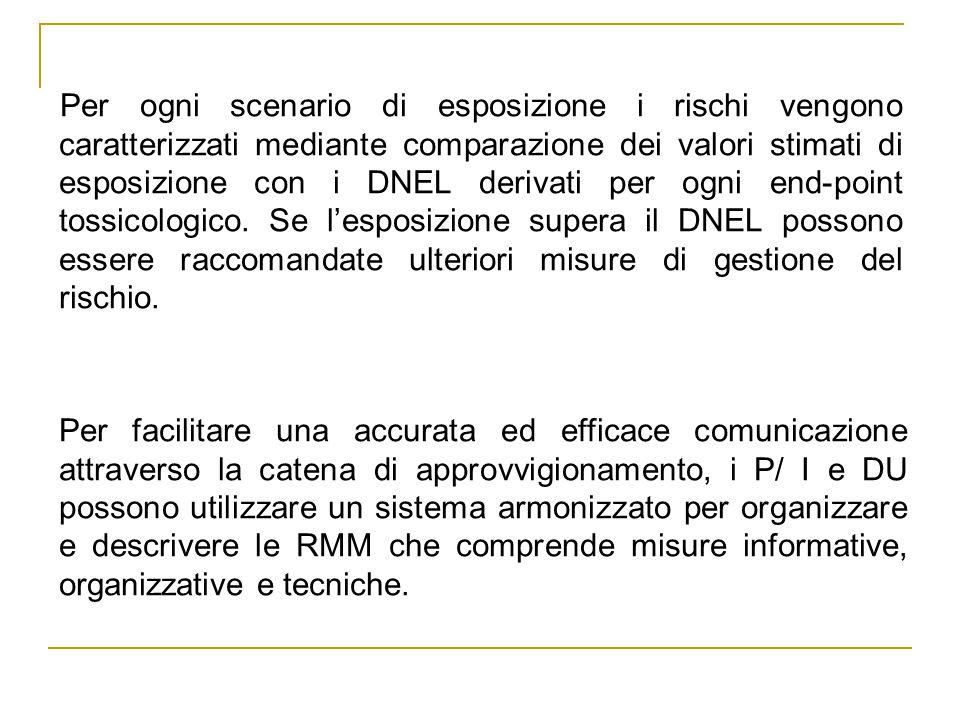 Per ogni scenario di esposizione i rischi vengono caratterizzati mediante comparazione dei valori stimati di esposizione con i DNEL derivati per ogni end-point tossicologico.