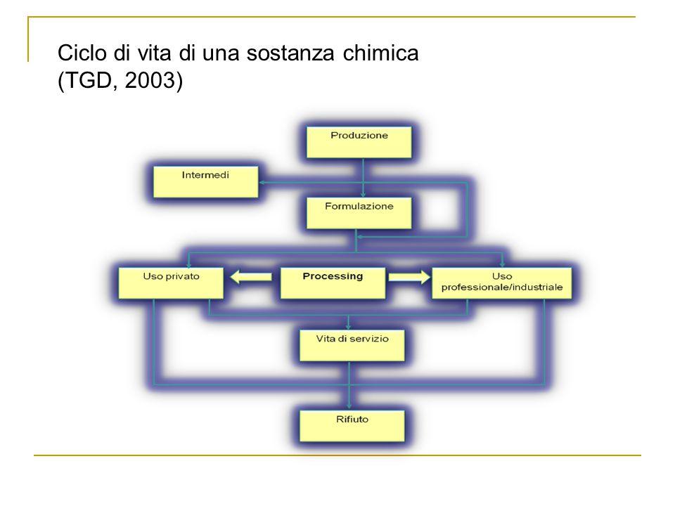 Ciclo di vita di una sostanza chimica (TGD, 2003)