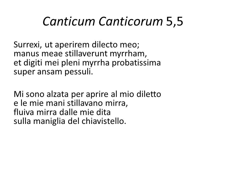 Canticum Canticorum 5,5 Surrexi, ut aperirem dilecto meo; manus meae stillaverunt myrrham, et digiti mei pleni myrrha probatissima super ansam pessuli.