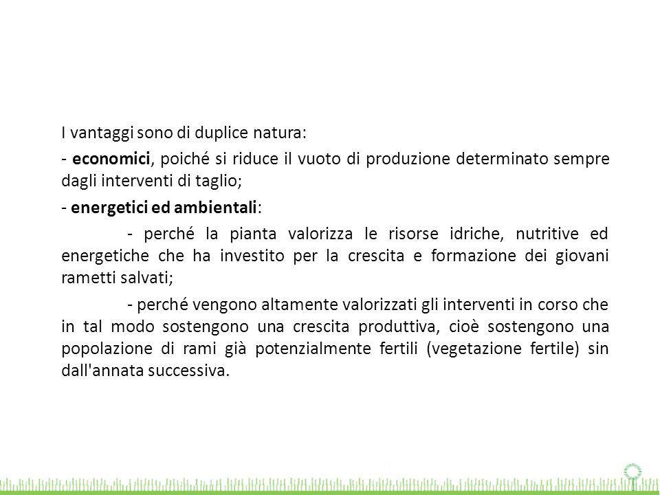 I vantaggi sono di duplice natura: - economici, poiché si riduce il vuoto di produzione determinato sempre dagli interventi di taglio; - energetici ed