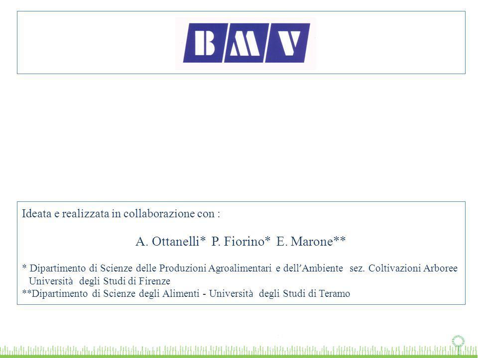 Ideata e realizzata in collaborazione con : A. Ottanelli* P. Fiorino* E. Marone** * Dipartimento di Scienze delle Produzioni Agroalimentari e dell ' A
