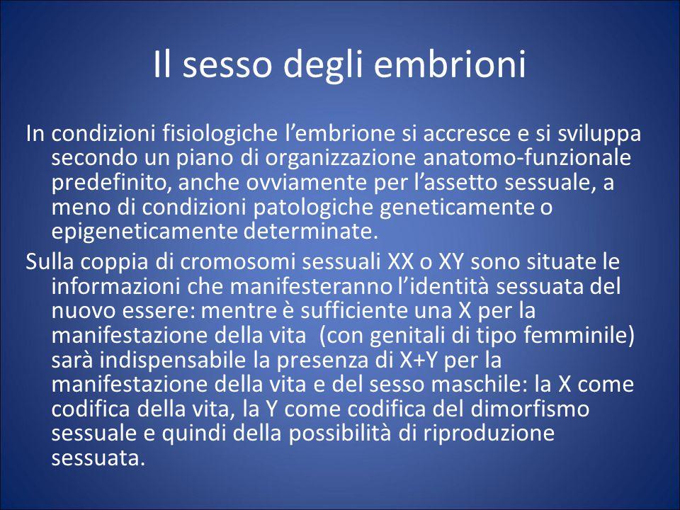 Il sesso degli embrioni In condizioni fisiologiche l'embrione si accresce e si sviluppa secondo un piano di organizzazione anatomo-funzionale predefinito, anche ovviamente per l'assetto sessuale, a meno di condizioni patologiche geneticamente o epigeneticamente determinate.