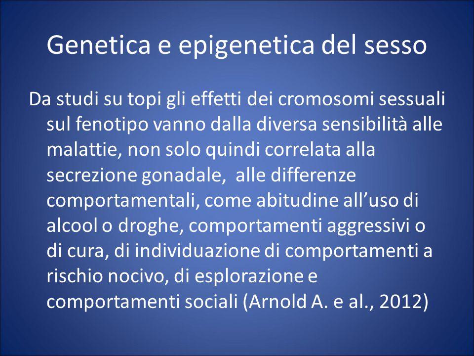 Genetica e epigenetica del sesso Da studi su topi gli effetti dei cromosomi sessuali sul fenotipo vanno dalla diversa sensibilità alle malattie, non solo quindi correlata alla secrezione gonadale, alle differenze comportamentali, come abitudine all'uso di alcool o droghe, comportamenti aggressivi o di cura, di individuazione di comportamenti a rischio nocivo, di esplorazione e comportamenti sociali (Arnold A.