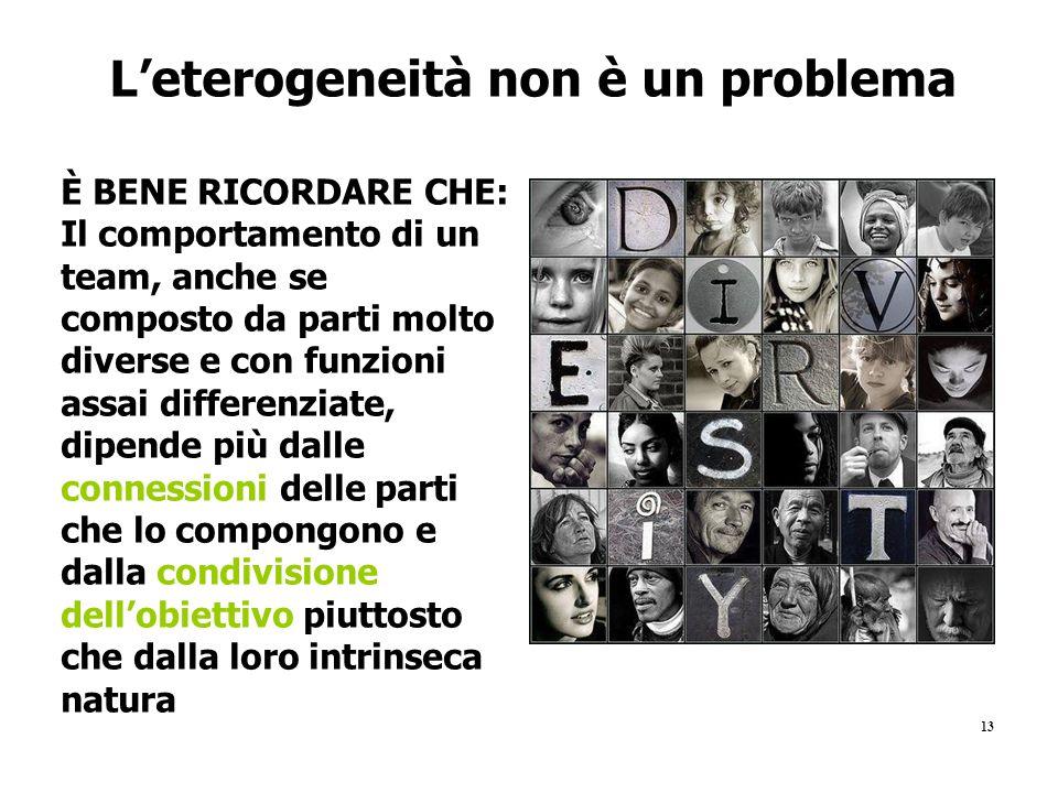 13 L'eterogeneità non è un problema È BENE RICORDARE CHE: Il comportamento di un team, anche se composto da parti molto diverse e con funzioni assai d