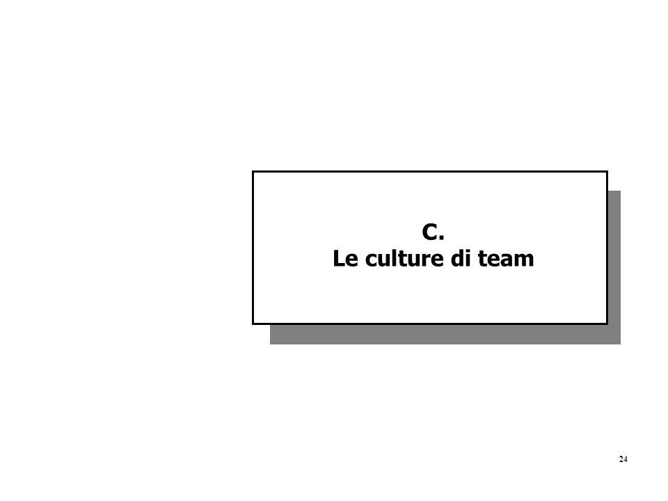24 C. Le culture di team