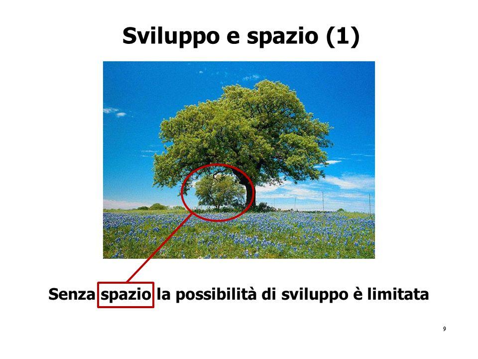 9 Sviluppo e spazio (1) Senza spazio la possibilità di sviluppo è limitata