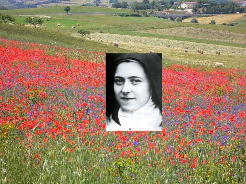 Teresa è uno dei piccoli del Vangelo che si lasciano condurre da Dio nelle profondità del suo Mistero.