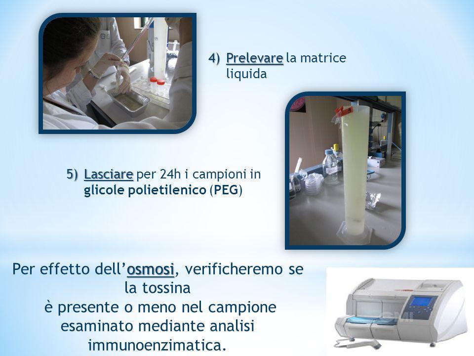 4)Prelevare 4)Prelevare la matrice liquida 5)Lasciare 5)Lasciare per 24h i campioni in glicole polietilenico (PEG) osmosi Per effetto dell'osmosi, ver