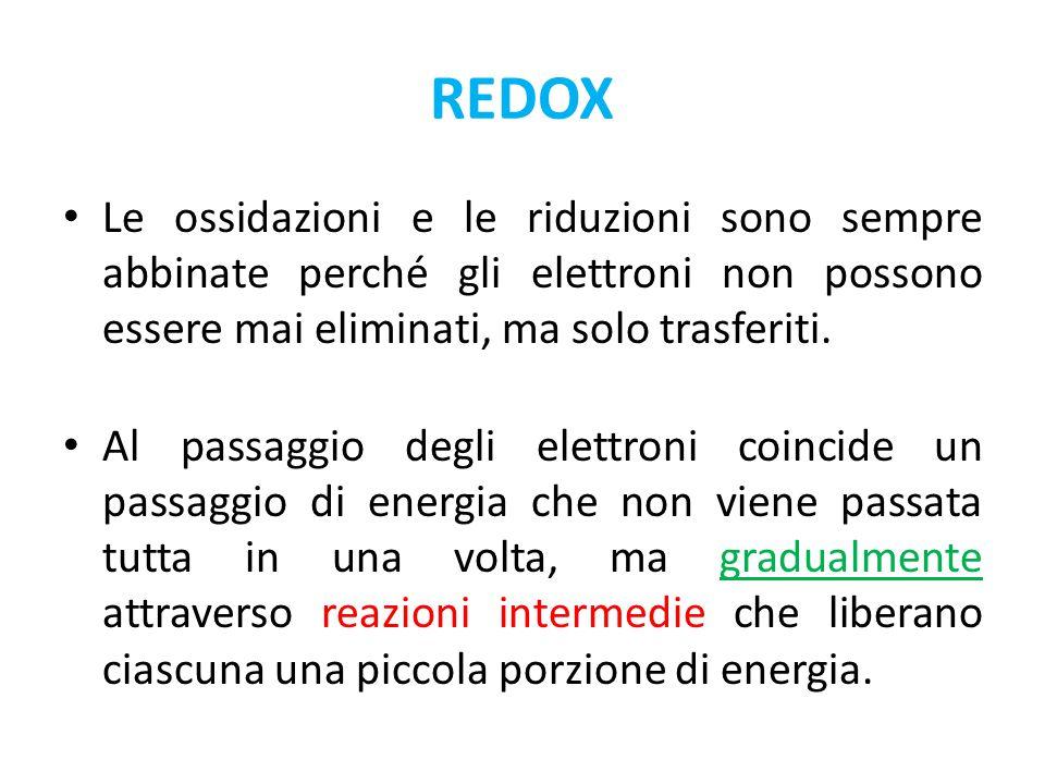 REDOX Le ossidazioni e le riduzioni sono sempre abbinate perché gli elettroni non possono essere mai eliminati, ma solo trasferiti. Al passaggio degli