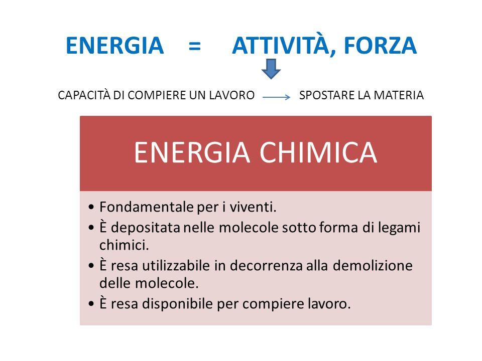 Reazione esoergonica Energia di attivazione Energia reagenti Energia prodotti