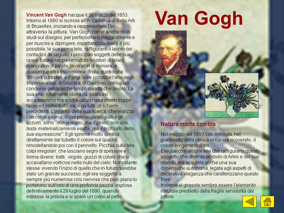 Van Gogh Nel maggio del 1890 Vincent nota, nel giardinetto della clinica in cui era ricoverato, il colore elegante dell'iris. Esegue così alcune tele