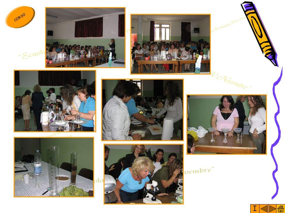 I Il corso di formazione propedeutico alla realizzazione del Progetto, è nato dalla conoscenza analitica dei percorsi didattici che i docenti avrebber