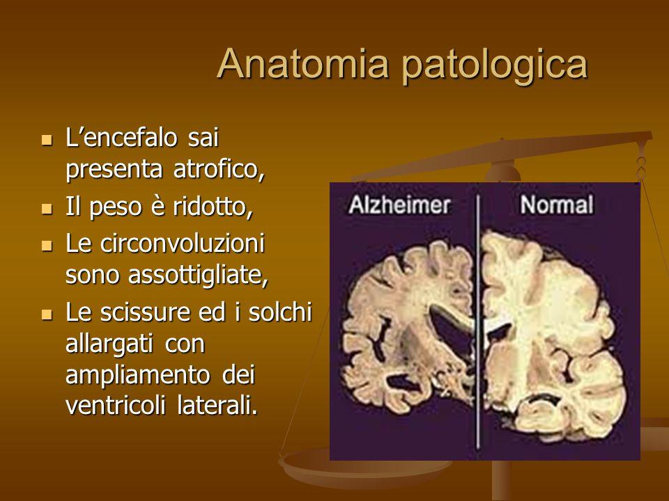 Anatomia patologica Anatomia patologica L'encefalo sai presenta atrofico, L'encefalo sai presenta atrofico, Il peso è ridotto, Il peso è ridotto, Le c