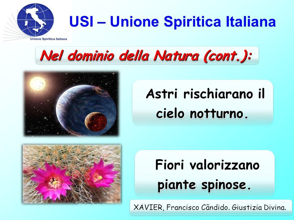 USI – Unione Spiritica Italiana Nel dominio della Natura: XAVIER, Francisco Cândido.