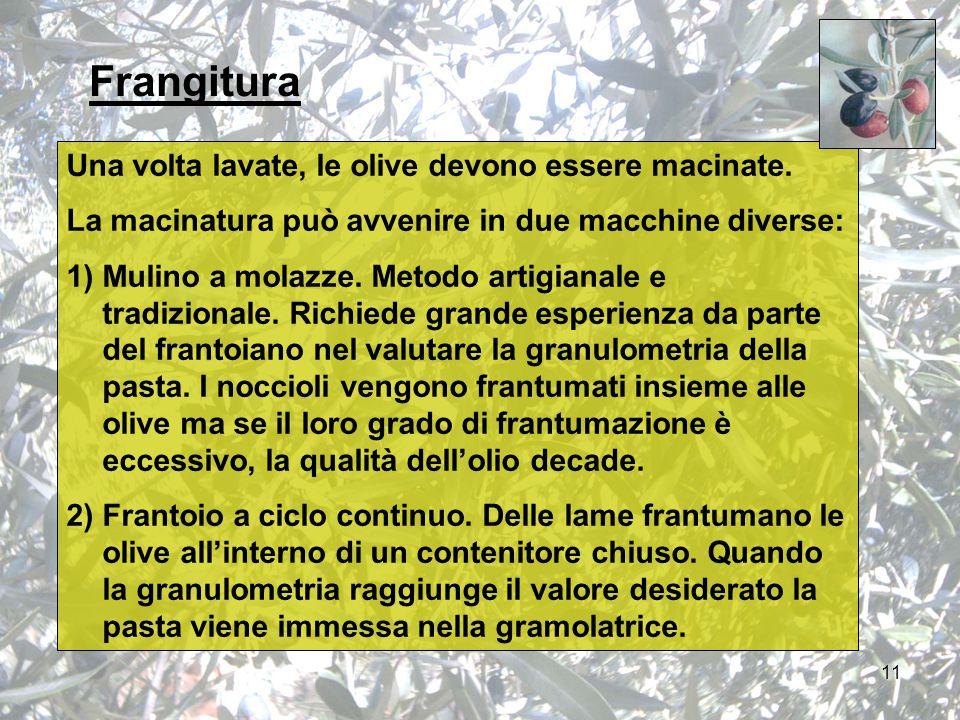 11 Frangitura Una volta lavate, le olive devono essere macinate.