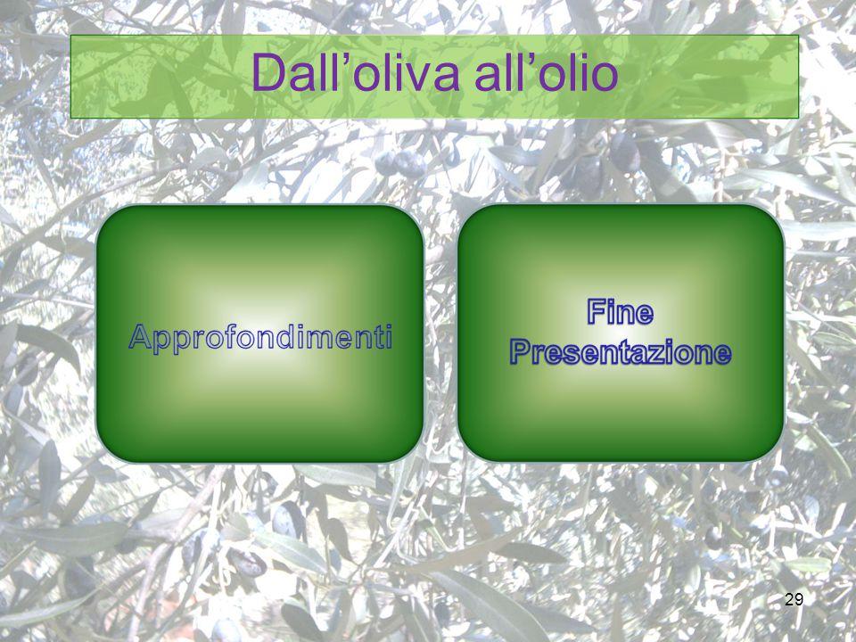 29 Dall'oliva all'olio
