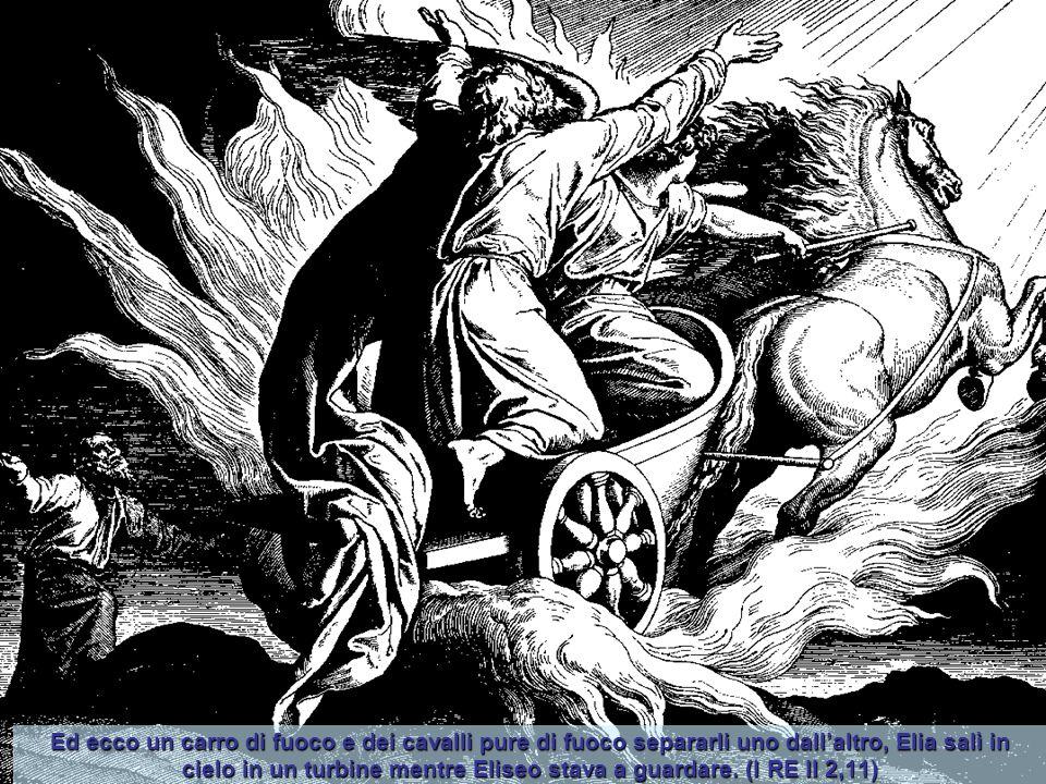 Intanto un uomo, teso l'arco, scoccò a caso una freccia, che andò a colpire Acab re di Israele tra le giunture e la corazza. E verso sera morì. (I RE