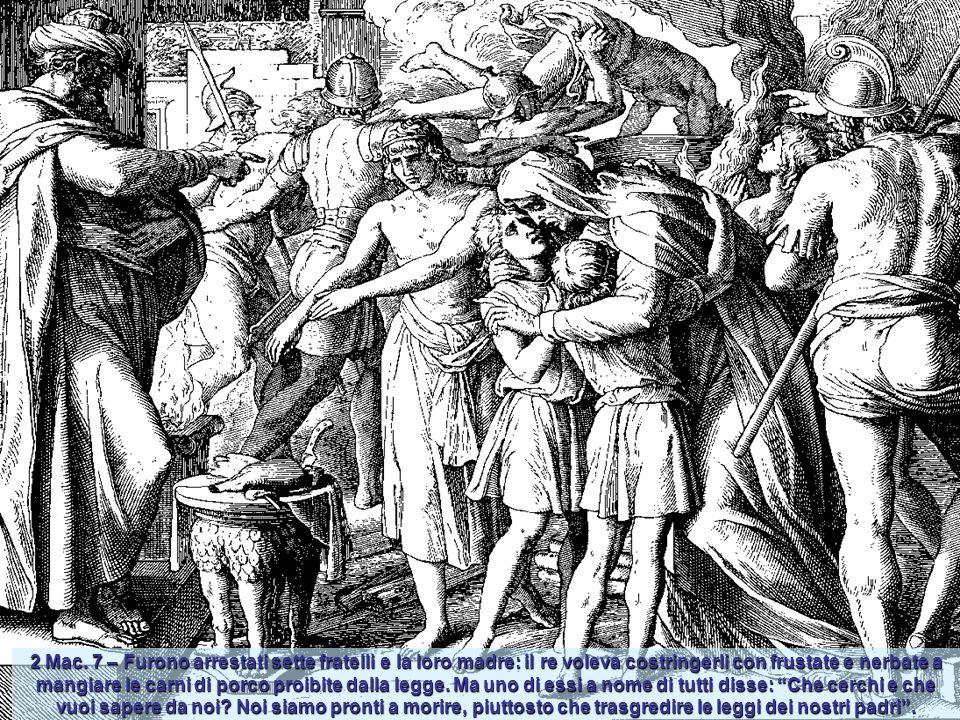 2 Mac. 3,25 - Apparve loro un cavallo montato da un terribile cavaliere che lanciandosi vero Eliodoro lo colpì violentemente con gli zoccoli posterior