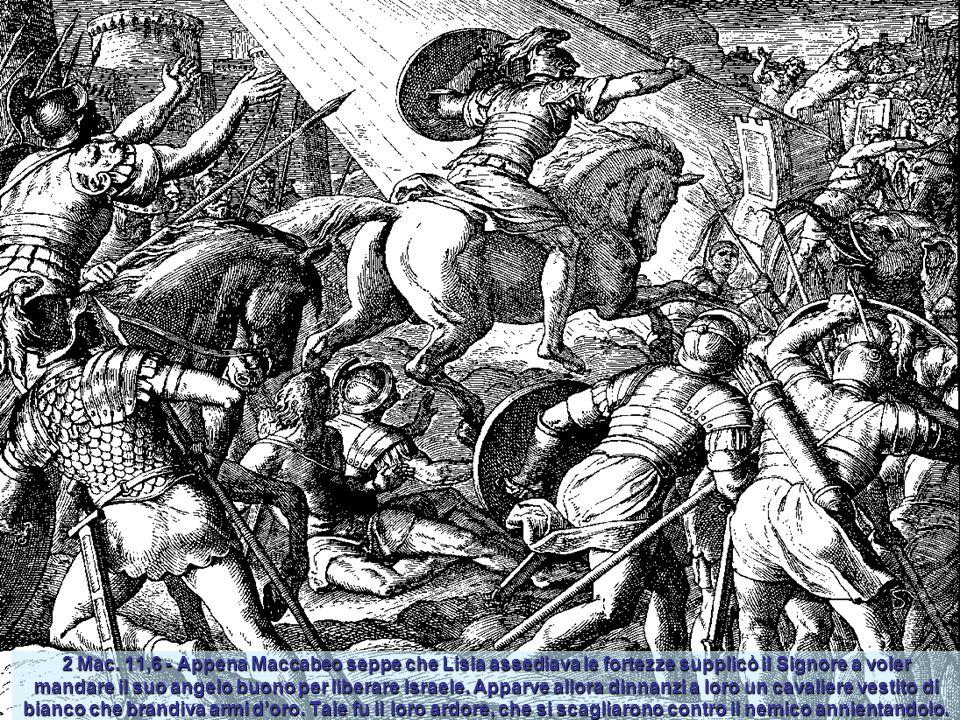 2 Mac. 7 – Furono arrestati sette fratelli e la loro madre: il re voleva costringerli con frustate e nerbate a mangiare le carni di porco proibite dal